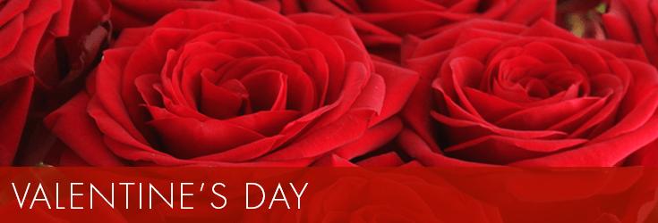Valentine's Day Flower & Gifts