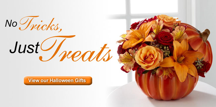 No tricks just treats for your special ghoul. View Fischer Flowers' selection of Halloween gifts.