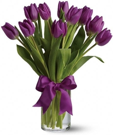 Passionately Purple Tulips